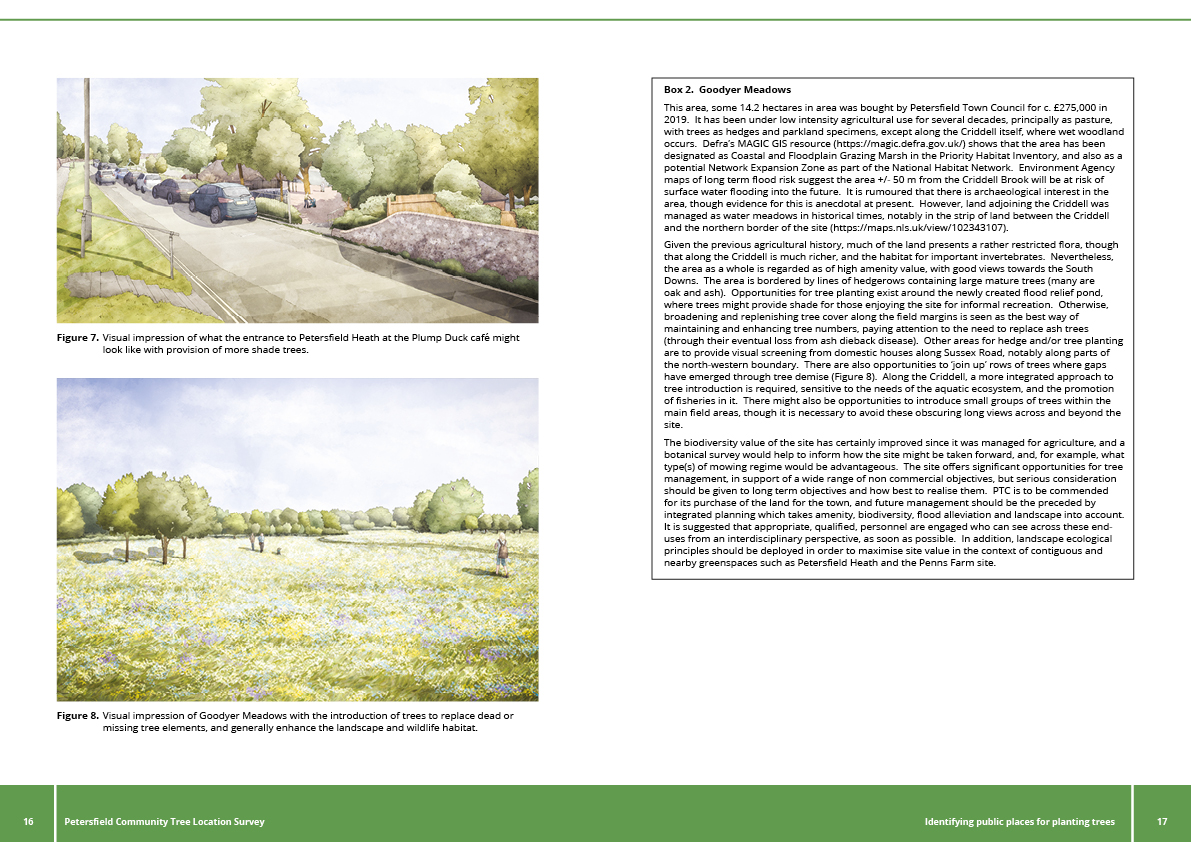Image of pages 16 & 17 Petersfield Community Tree Location Survey Report